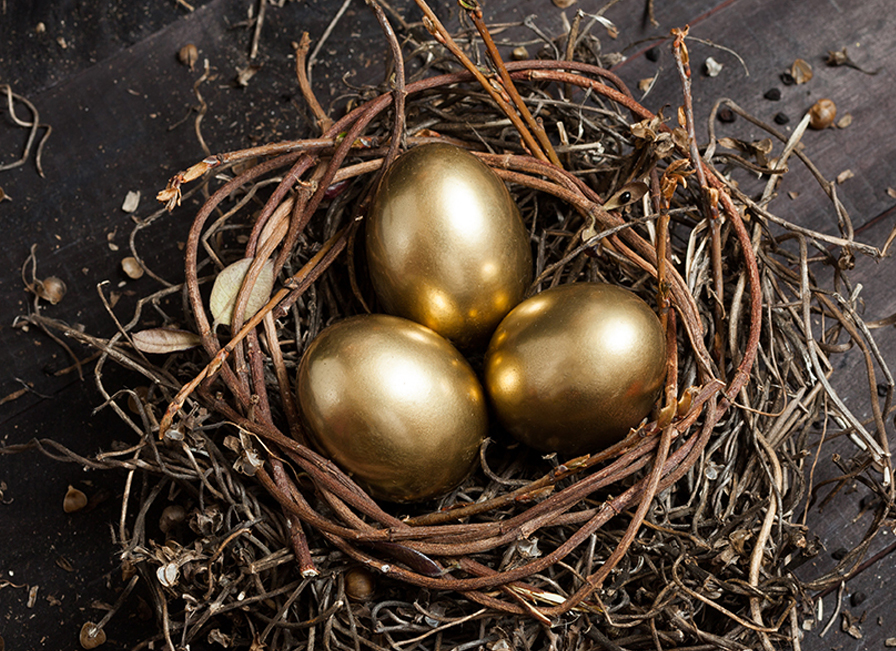 Wealth Management & Personal Financial Planning